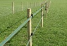 Elingamite Electric fencing 4